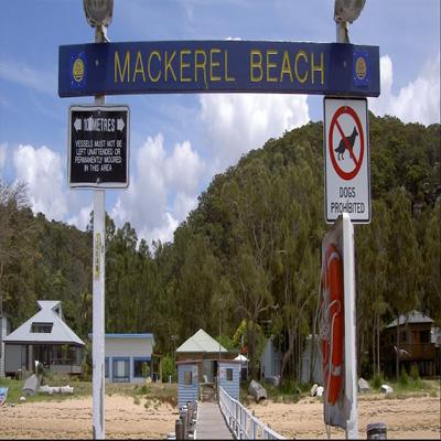 maxi taxi Great Mackerel Beach,sydney, NSW