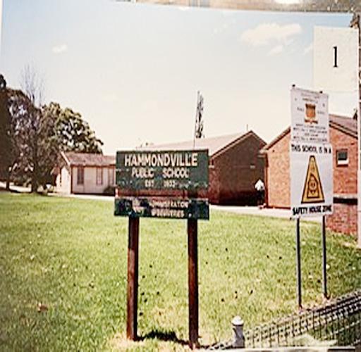 Maxi taxi Hammondville ,sydney,nsw