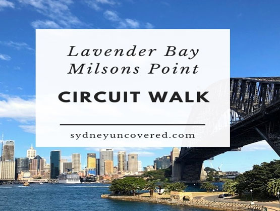 Maxi Taxi Booking to Lavender Bay,Sydney