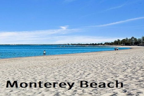 Maxi Taxi Booking to Monterey,Sydney